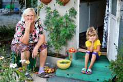 有他的祖母的孙女收集了蕃茄庄稼, 免版税库存图片