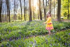 有会开蓝色钟形花的草花的孩子在春天森林里 图库摄影