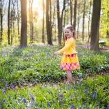 有会开蓝色钟形花的草花的孩子在春天森林里 免版税图库摄影