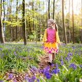 有会开蓝色钟形花的草花的孩子在春天森林里 库存照片