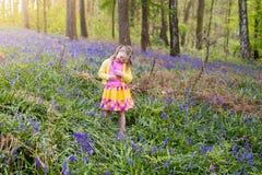 有会开蓝色钟形花的草花的孩子在春天森林里 免版税库存图片