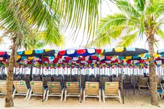 有伞的在海滩的棕榈和椅子 免版税库存照片