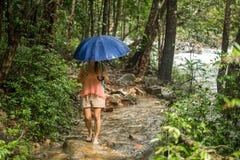 有伞的女孩在雨林里 免版税库存图片