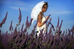 有伞的女孩走在淡紫色中的 免版税库存图片
