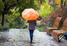 有伞的少妇在美丽的秋天公园 免版税库存图片