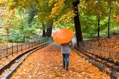 有伞的少妇在美丽的秋天公园 库存照片