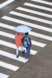 有伞的步行者在斑马线,上海,中国 库存照片