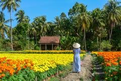 有传统礼服的越南妇女 库存图片