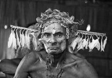 有传统绘画和着色的画象Asmat战士在面孔 免版税库存照片