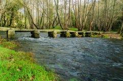 有伴游的桥梁 免版税图库摄影