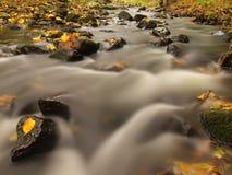 有低级的山河水,与第一片五颜六色的叶子的石渣 生苔岩石和冰砾在河岸 免版税库存图片