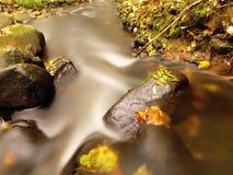 有低级的山河水,与第一片五颜六色的叶子的石渣 生苔岩石和冰砾在河岸 库存照片