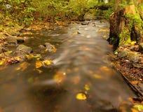 有低级的山河水,与第一片五颜六色的叶子的石渣 生苔岩石和冰砾在河岸 图库摄影