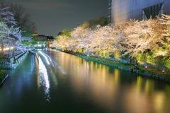 有佐仓树的冈崎运河 库存照片