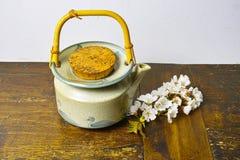 有佐仓花的日本的茶壶 库存照片