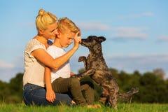 有使用与一条小狗的儿子的母亲 图库摄影