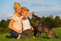 有使用与一条小狗的儿子的母亲 库存图片