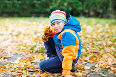 有使用在庭院里的秋叶的愉快的逗人喜爱的小孩男孩 免版税图库摄影