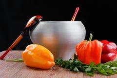 有俄国木匙子和杂色胡椒的生铁罐 免版税库存图片