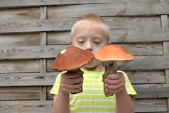 有保持向下使两个大蘑菇的综合症状的男孩 图库摄影
