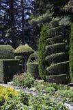有修剪的花园的庭院 库存照片
