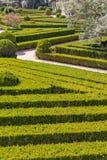 有修剪的花园的整洁的公园种植光滑的线 库存图片