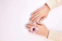有修指甲和一朵桃红色花的女性手 免版税图库摄影