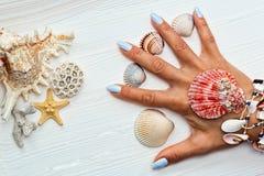 有修指甲和海壳的女性手在手指之间 免版税图库摄影
