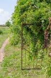 有俯视的路老生锈的铁花园大门 免版税库存照片