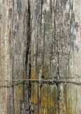 有倒钩导线和模子的破旧的木岗位 免版税图库摄影