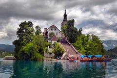 有假定圣Marys教会的布莱德湖在小海岛上的 B 免版税图库摄影