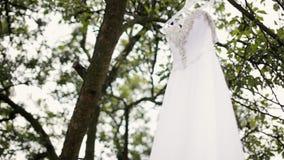 有假钻石的豪华白色婚纱在树垂悬 影视素材