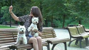 有做在长凳的两条白色狗狗的愉快的妇女selfie E 影视素材