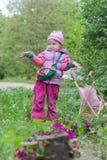 有做无能为力的耸肩姿态的桃红色玩具婴儿推车的小女孩在紫色樱草属花圃附近 免版税库存图片