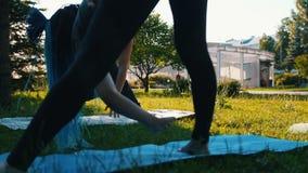 有做瑜伽的dreadlocks的年轻女人在有辅导员的公园-弯曲在姿势 影视素材
