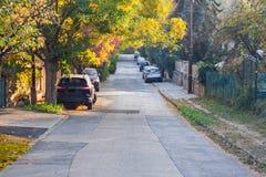 有停放的汽车的城市街道 免版税图库摄影