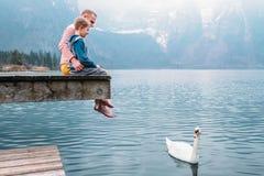 有儿子的父亲坐木码头,并且在白色天鹅的神色游泳 库存图片