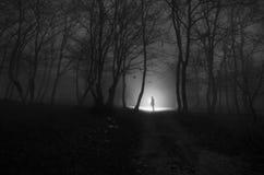 有光的单独被定调子的女孩在森林里在晚上或者蓝色 免版税库存图片