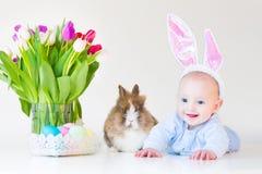 有兔宝宝耳朵的可爱的男婴用真正的兔子 库存照片