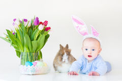 有兔宝宝耳朵的可爱的男婴用真正的兔子 免版税库存照片