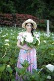 有八仙花属花的领域的美女 免版税库存图片