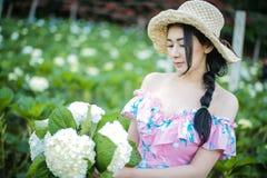 有八仙花属花的领域的美女 免版税图库摄影