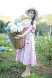 有八仙花属花的领域的美女 库存照片