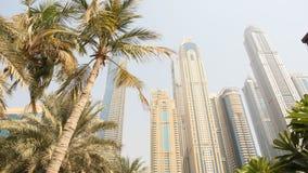 有公寓的住宅摩天大楼反对棕榈树背景在迪拜 阿拉伯联合酋长国 免版税图库摄影
