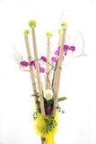 有兰花、常春藤和竹子藤茎的装饰花瓶 免版税图库摄影