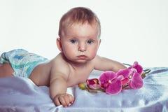 有兰花的蓝眼睛的女婴 库存图片