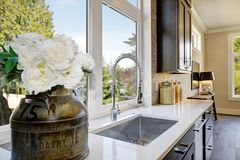 有典雅的鹅颈管龙头的可爱的厨房 库存图片
