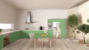 有内在庭院的,最小的内部desi白色和绿色厨房 图库摄影