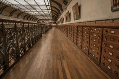 有内阁的霍尔和在古生物学和比较解剖学画廊的化石显示在巴黎 免版税库存照片