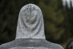 有冠乌鸦的背面图 免版税图库摄影